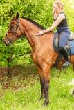 Kobieta dżokej trenuje jeździeckiego konia Sport aktywność obraz royalty free