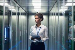 Kobieta diagnozuje serweru narzędzia z pastylką zdjęcie royalty free