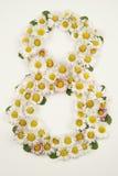 Kobieta dnia kwiaty Obrazy Stock