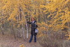 Kobieta dojrzały wiek w lesie obok brzozy z kolorem żółtym zdjęcie royalty free