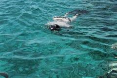 Kobieta fotografa pikowanie w wodę Czerwony morze Fotografia Royalty Free