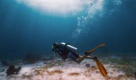 Kobieta Freediver obrazy royalty free