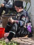 Kobieta Hmong Sapa, Lao Cai Obraz Stock