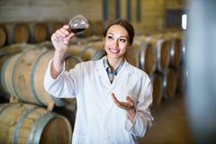 Kobieta jest ubranym żakiet trzyma szkło wino na wytwórnii win Fotografia Royalty Free