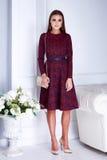 Kobieta katalogu ubraniowej eleganckiej mody czerwieni stylu seksowna suknia Obraz Stock