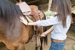 Kobieta konia Naciągowy comber Dla Horseback jazdy fotografia royalty free