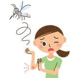 Kobieta która gryźć komarem Zdjęcie Royalty Free
