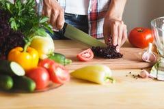 Kobieta kucharz przy kuchnią zdjęcie stock