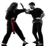 Kobieta Kung Fu Pencak Silat odizolowywał Obraz Stock