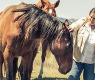 Kobieta Migdali Brown konia obrazy stock