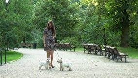Kobieta model w sukni spacer z parą białe psiny w parku ?adunku elektrostatycznego strza? zbiory wideo
