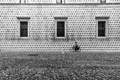 Kobieta na bicyklu przed sławnym Palazzo dei Diamanti Fotografia Stock