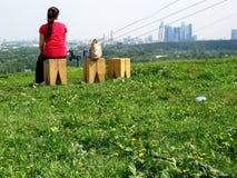Kobieta na obserwaci platformy spojrzeniach przy Moskwa miastem zdjęcie stock