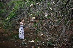 Kobieta na wakacje Plumeria drzewem z białymi kwiatami obraz stock