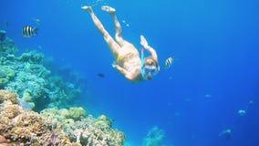 Kobieta nur podwodny w snorkeling pikowania masce zbiory