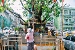 Kobieta ono modli się przy uliczną świątynią w Yangon obraz royalty free
