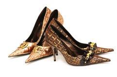 kobieta par butów 2 Obraz Stock