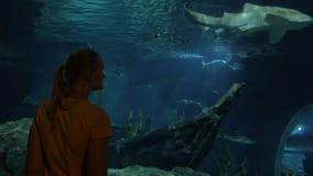 Kobieta patrzeje rekinu przy dużym akwarium Siam oceanu świat, Bangkok, Tajlandia zbiory wideo