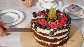 Kobieta plasterków kawałek urodzinowy domowej roboty czekoladowy tort i stawia mnie na talerzu, wręcza zbliżenie zbiory