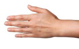 Kobieta plecy ręki odizolowywać na białym tle Fotografia Royalty Free