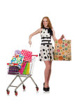 Kobieta po robić zakupy Fotografia Royalty Free