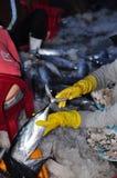 Kobieta pracownicy są zbierający rybołówstwo i sortujący w kosze po długiego dnia połowu w Hon Ro porcie morskim, Nha Trang miast Zdjęcia Stock