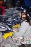 Kobieta pracownicy są zbierający rybołówstwo i sortujący w kosze po długiego dnia połowu w Hon Ro porcie morskim, Nha Trang miast Obraz Royalty Free