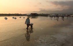 Kobieta pracuje na soli polu w Phan Dzwonił, Wietnam Obraz Royalty Free