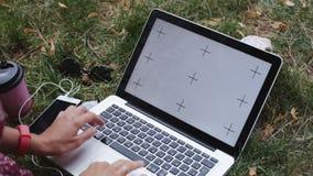 Kobieta pracuje na trawie z laptopem zdjęcie wideo