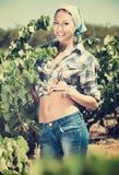Kobieta pracuje na wytwórnia win jardzie Fotografia Royalty Free