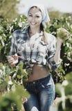 Kobieta pracuje na wytwórnia win jardzie Fotografia Stock