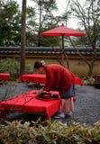 Kobieta pracuje przy herbacianym ogródem w Kyoto, Japonia obraz royalty free
