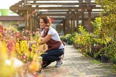 Kobieta pracuje w ogrodowym centrum Zdjęcia Royalty Free