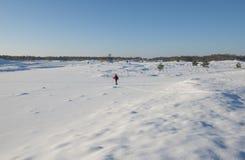 Kobieta przecinającego kraju narciarstwo Obraz Royalty Free
