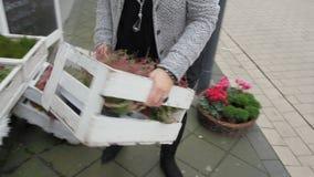 Kobieta przynosi drewnianych pudełka przed jej sklepem zbiory wideo