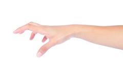Kobieta pusta otwiera rękę Obraz Stock