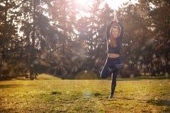 Kobieta ranku ćwiczy medytacja w naturze Obrazy Royalty Free