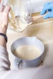Kobieta robi cheesecake deserowi na jej kuchni Żadny cukier, zdrowie Zdjęcie Stock