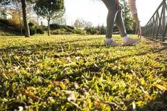 Kobieta robi rozciąganiu ćwiczy przy miastowym parkiem w jesień sezonie zdjęcie stock