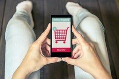 Kobieta robi zakupy przy online sklepem fury ikony czerwony serii target1610_1_ Fotografia Royalty Free