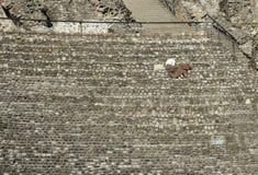 Kobieta sadzał samotnie przy amfiteatrem Trzy Gauls w Lyo zdjęcia stock