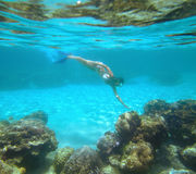 Kobieta snorkeling w pięknej rafie koralowa Obrazy Royalty Free