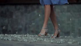 Kobieta spaceru puszek ulica w parku zdjęcie wideo