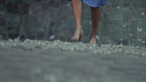 Kobieta spaceru puszek ulica w parku zbiory