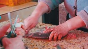 Kobieta sprzedawca Ciie Up ryba w Rybim rynku zbiory wideo