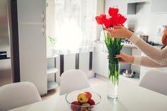 Kobieta stawia tulipany w wazie Gospodyni domowa bierze opiekę coziness w kuchni nowoczesna kuchnia projektu Obrazy Royalty Free
