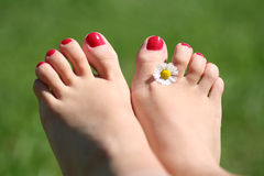 kobieta stopy Fotografia Royalty Free