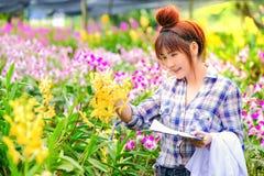 Kobieta Storczykowi badacze są rekonesansowi i dokumentujący właściwości orchidee w ogródzie zdjęcie royalty free