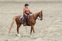 Kobieta target810_1_ Saddlebred konia Obrazy Royalty Free
