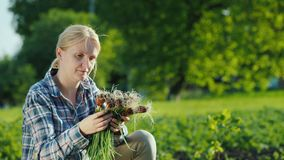 Kobieta trzyma świeże zielone cebule, właśnie skubać od ogródu zdjęcie wideo